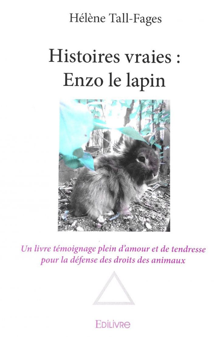 Histoires Vraies D Enzo Le Lapin Helenetall Com